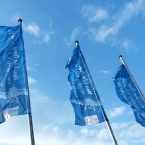 Флаги для коррекции по васту